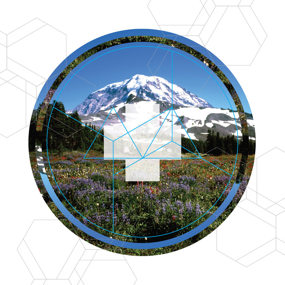 RAINIER ESOTERICS 2    • TRANSPARENCY FILM PRINT ONLY