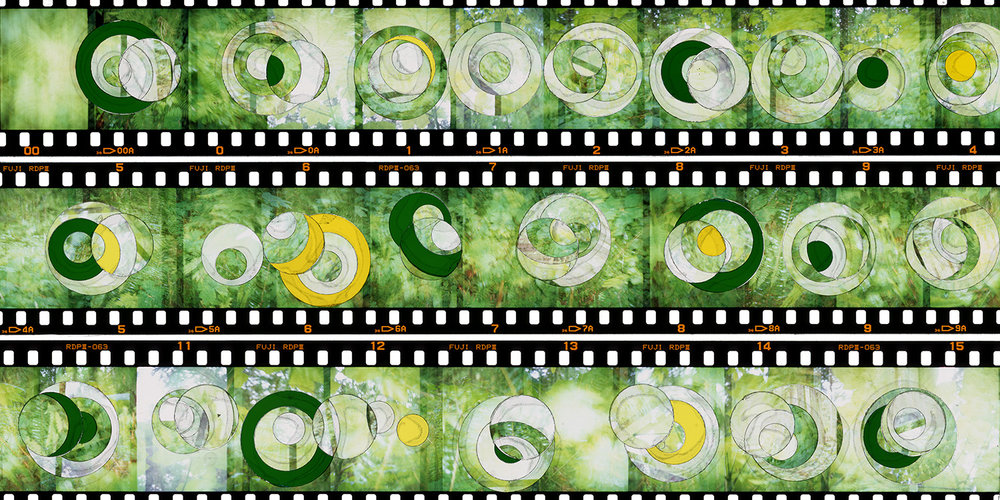 """VERDANT PHASES IN MINOR"", TRANSPARENCY FILM PRINT,"