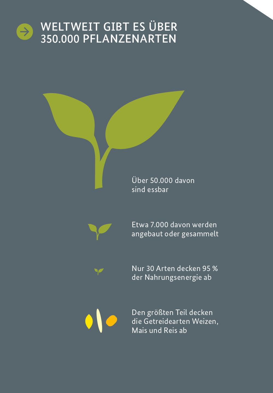 »Zwischen gestern und heute – Landwirtschaftliche Vielfalt nutzen und bewahren»  INFOGRAFIK // BMZ (Bundesministerium für wirtschaftliche Zusammenarbeit und Entwicklung) // Grafische Darstellung zur Verdeutlichung der Biodiversität