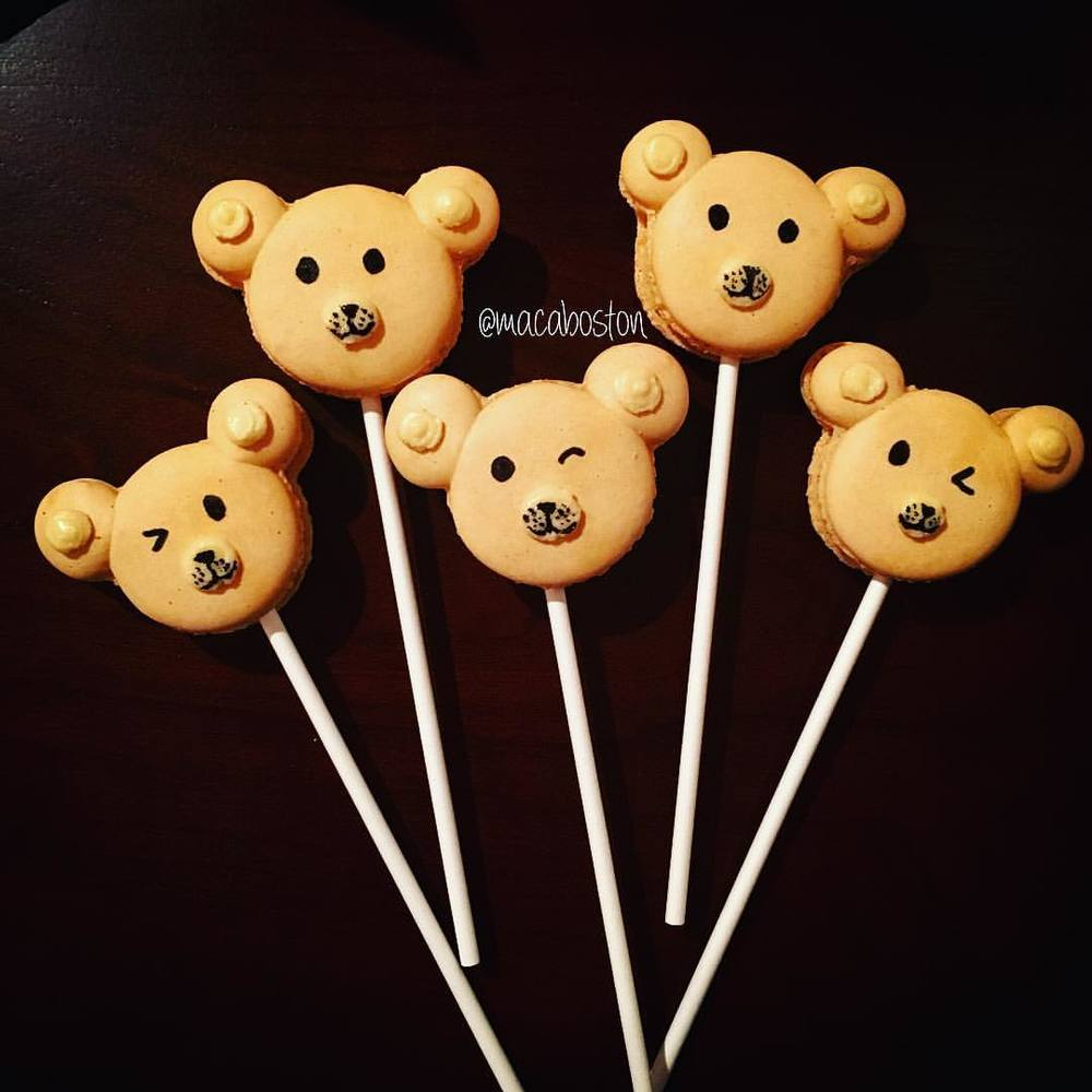 Teddy Bear Maca Pops