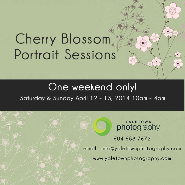cherry-blossom_2014_Yaletown_Photography.png