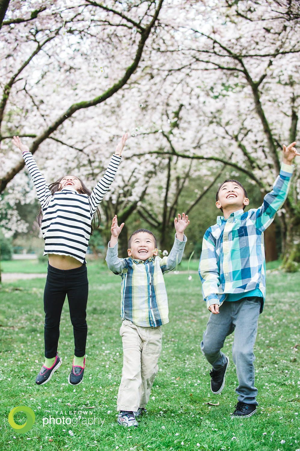 cherry-blossom-vancouver-portraits-family-photography-children-photographer-yaletown-photography-photo