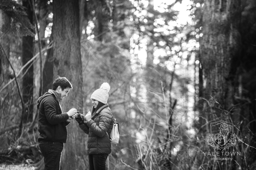 Wedding-Proposal-Vancouver-Stanley-Park-Wedding-Photographer-Vancouver-Yaletown-Photography-Photo-10.JPG