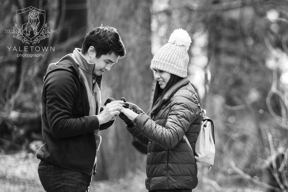 Wedding-Proposal-Vancouver-Stanley-Park-Wedding-Photographer-Vancouver-Yaletown-Photography-Photo-11.JPG