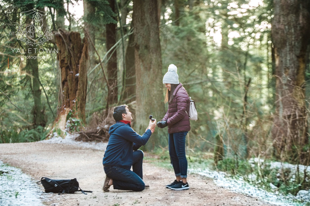 Wedding-Proposal-Vancouver-Stanley-Park-Wedding-Photographer-Vancouver-Yaletown-Photography-Photo-09.JPG
