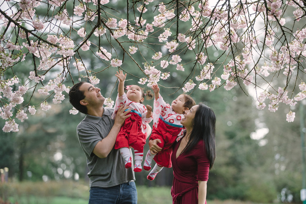 family-portraits-cherry-blossom-vancouver-portraits-yaletown-photography-photo