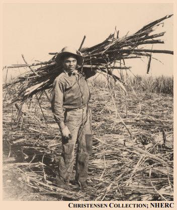 A Japanese sugar cane plantation laborer; Source