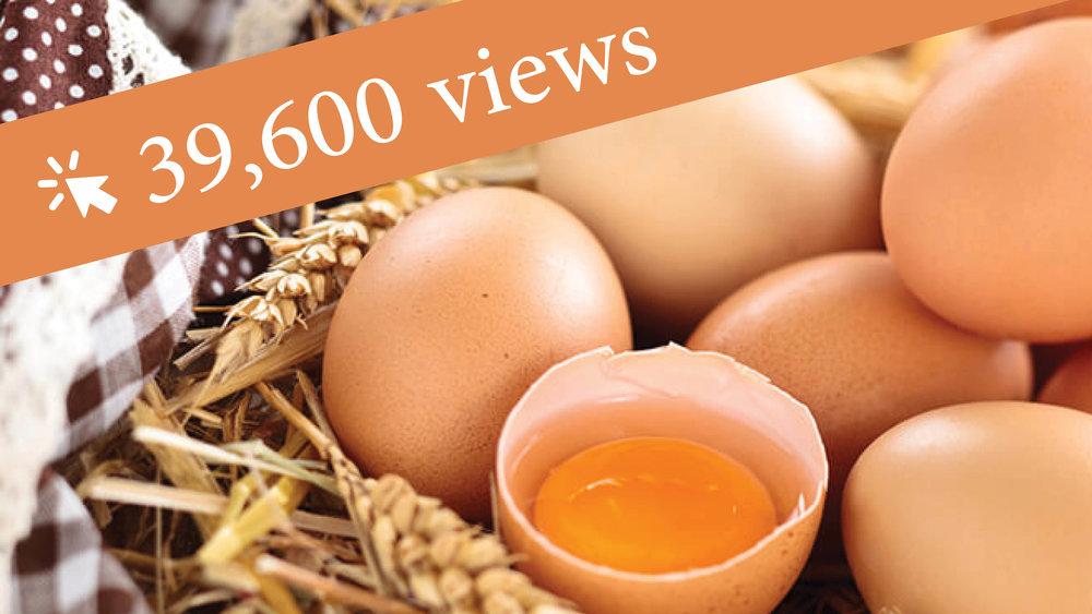 Design-Eggs.jpg