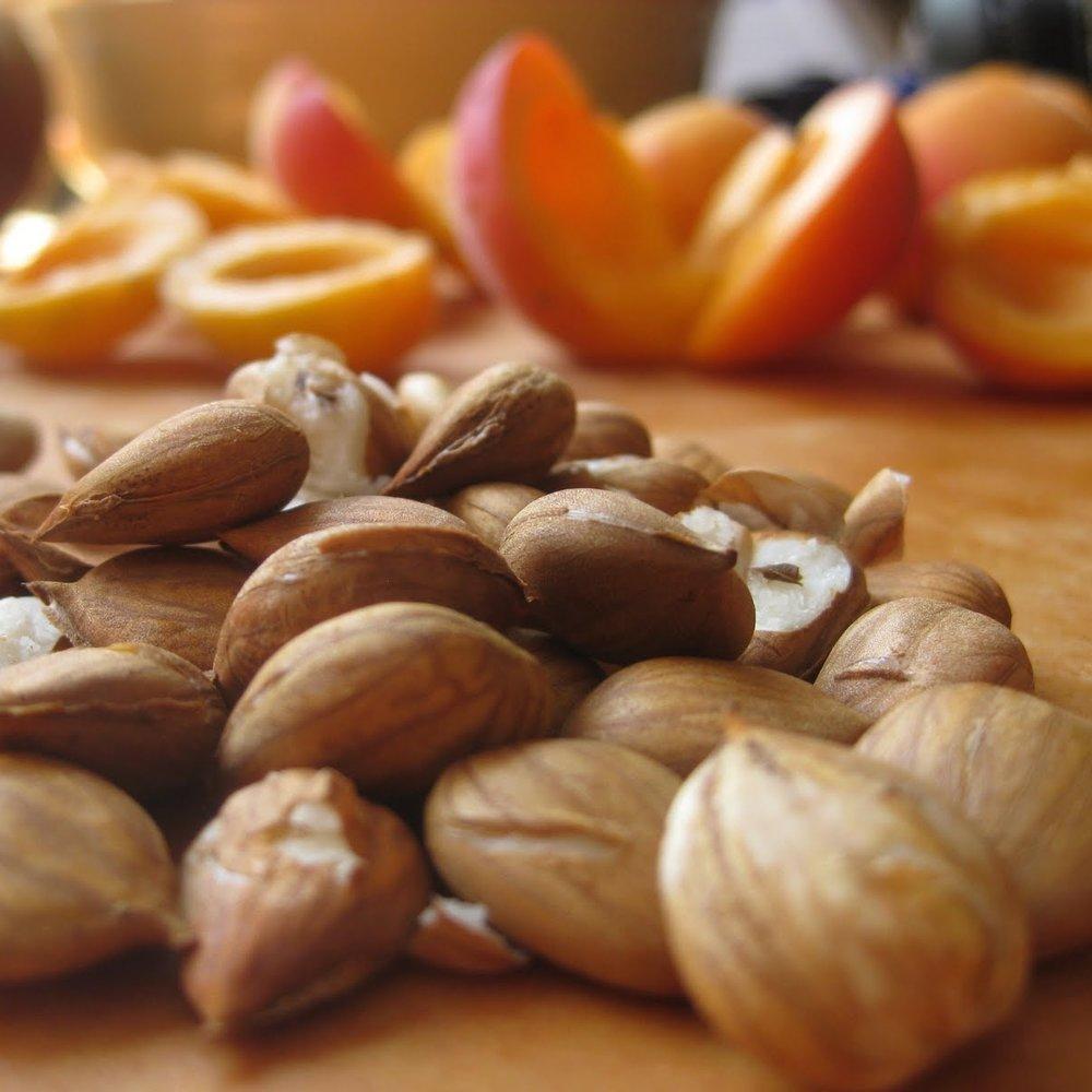 Apricot-kernels.jpg