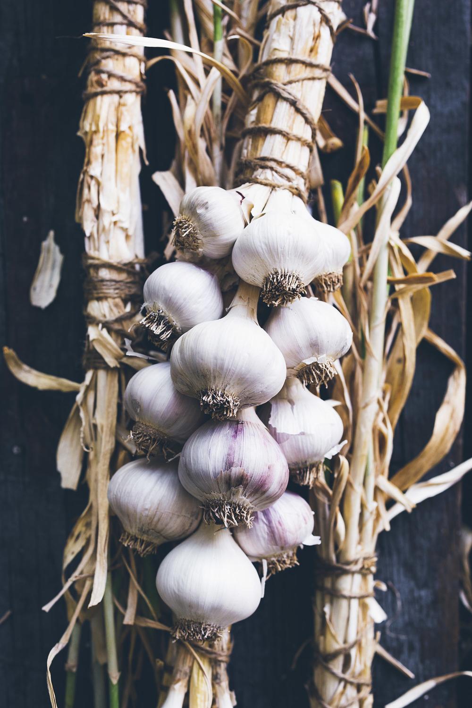 Garlic-4379_Final.jpg
