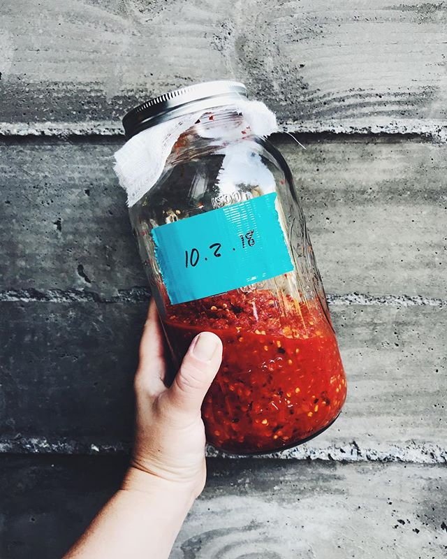 This is the way to go.. I experimented making 2 styles of hot sauce and the fermented version is DOPE 🔥💥☄️🔥 after 7 days i blended the fermented chili peppers with some vinegar and now it's ready for🍕🥑🍳🌯🍜🍚🌮 #evaskitchengarden #fermentedfoods #fermentedhotsauce #hotsauce #homemade #homegrown #growyourown