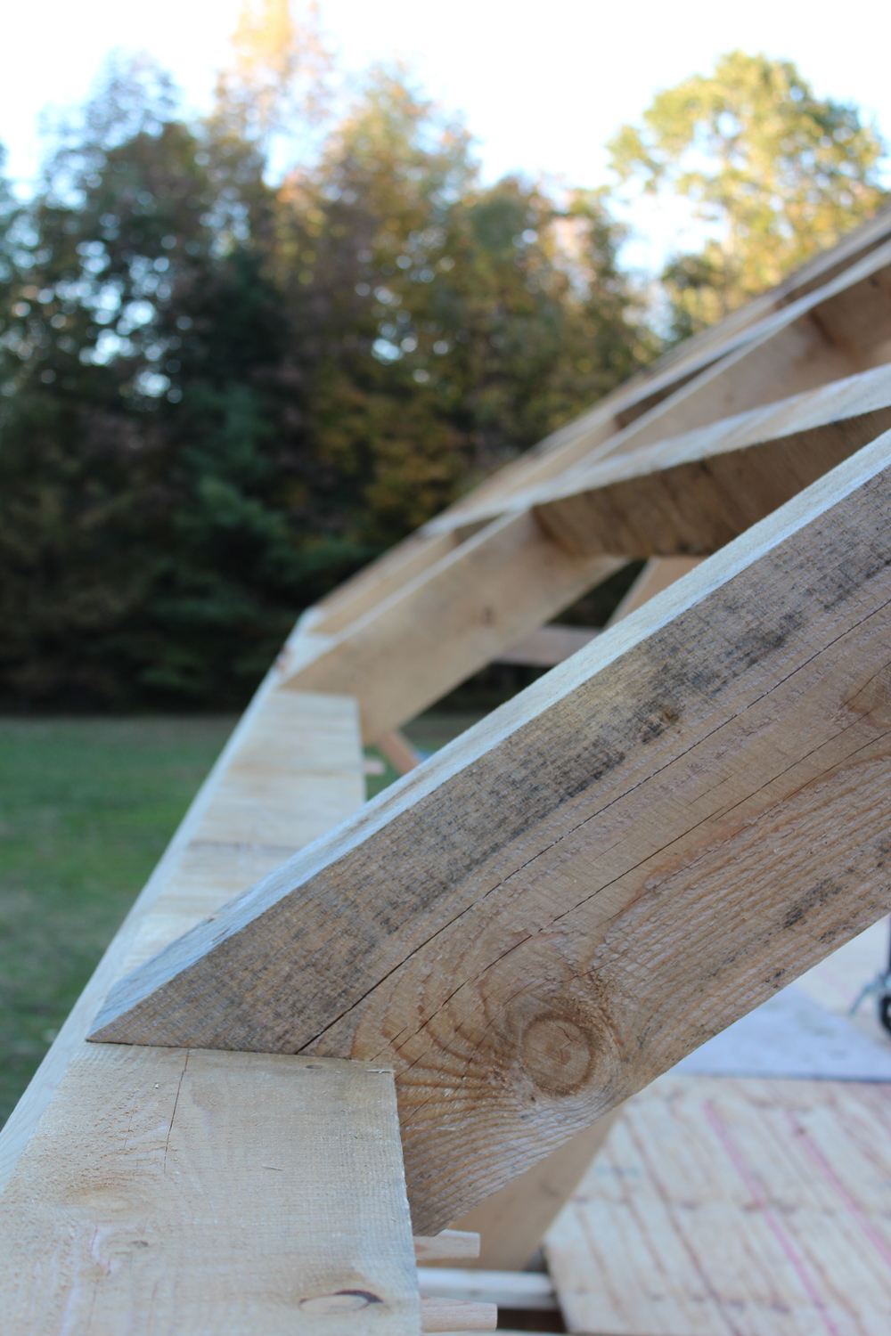 Timberframe roof detail, Ashfield MA