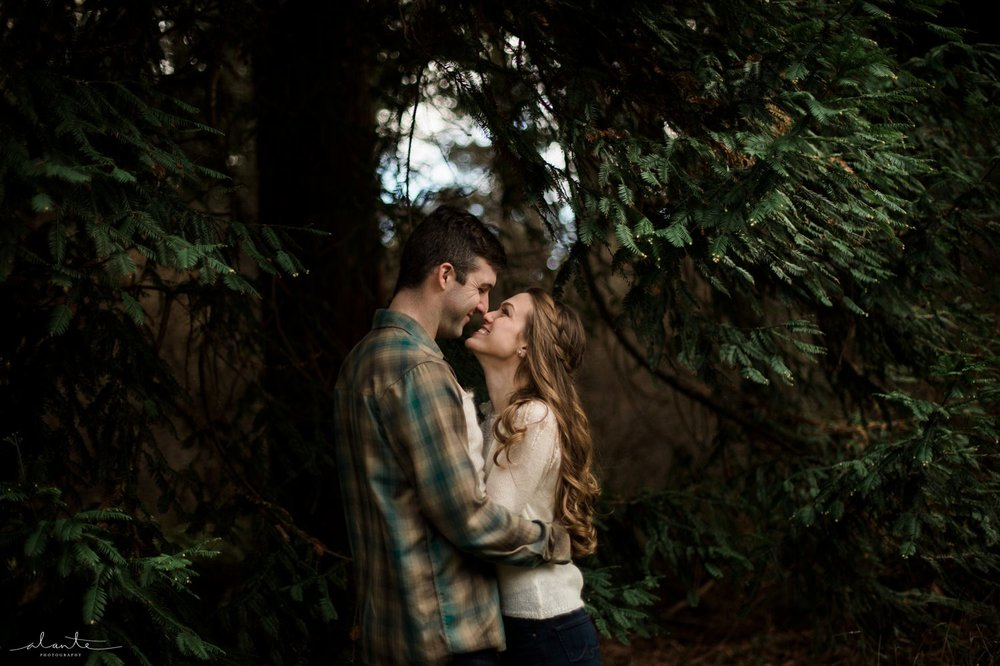 Surrounded by trees in a Seattle Engagement Photos by http://www.alantephotography.com