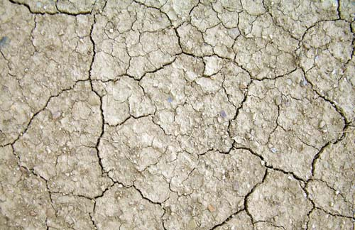 4.cracked-mud1.jpg