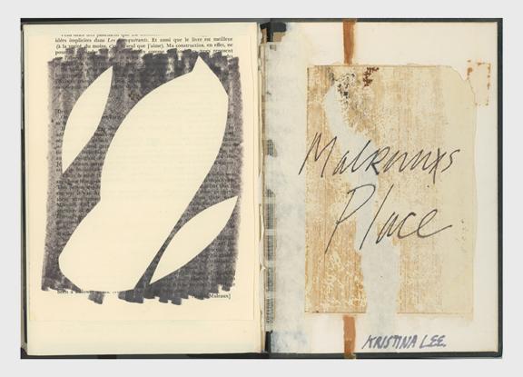 Malraux's PLace 05.jpg