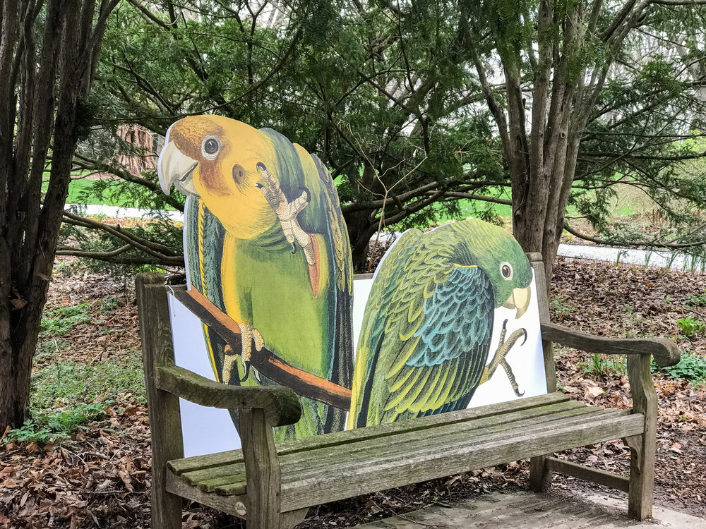 Bird Bench at Indianapolis Museum of Art