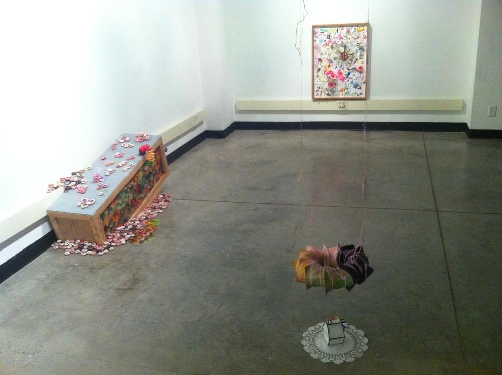 ie gallery install.JPG