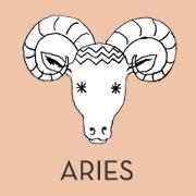 animal-pink-aries.png