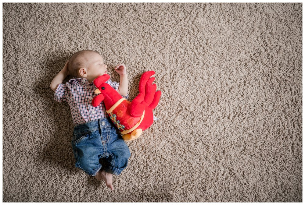 In Home Newborn Session_0036.jpg