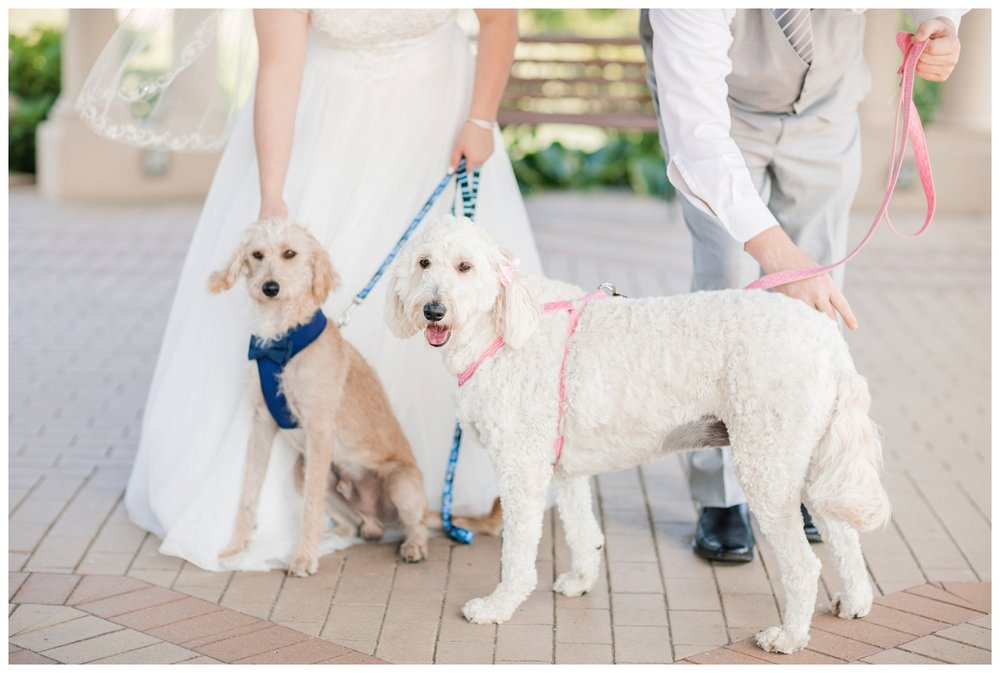 Caro's Wedding_0046.jpg