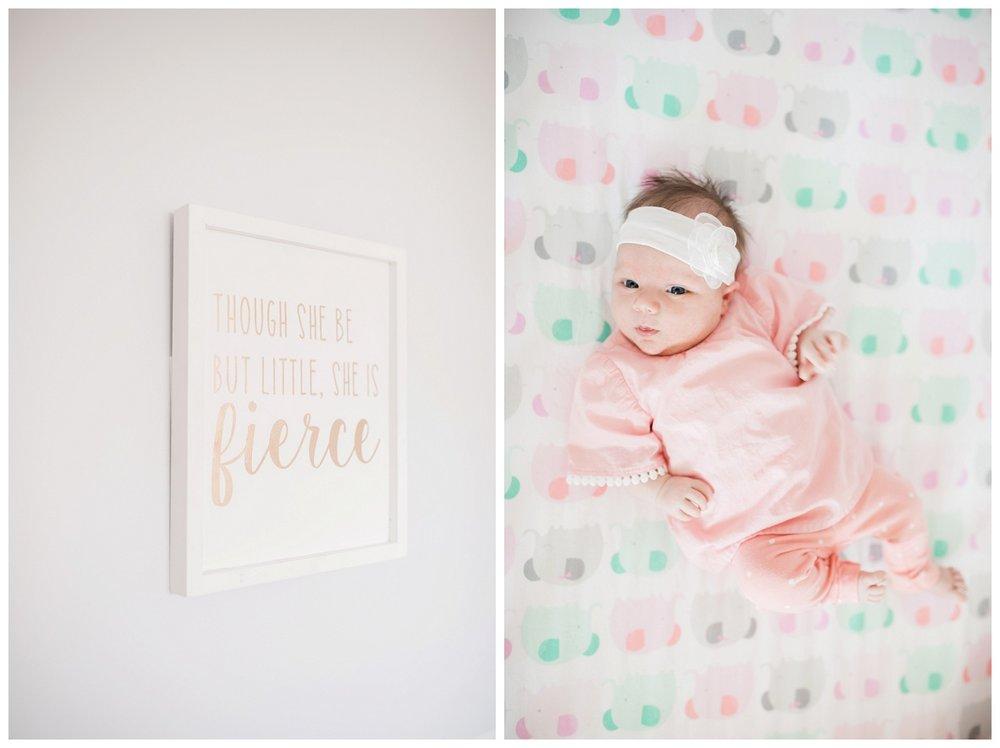Baby Ellie Newborn Session_0009.jpg