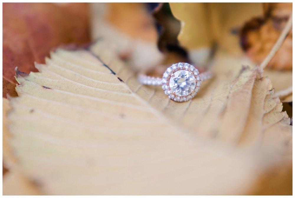 Cleveland Engagement Photographer_0058.jpg