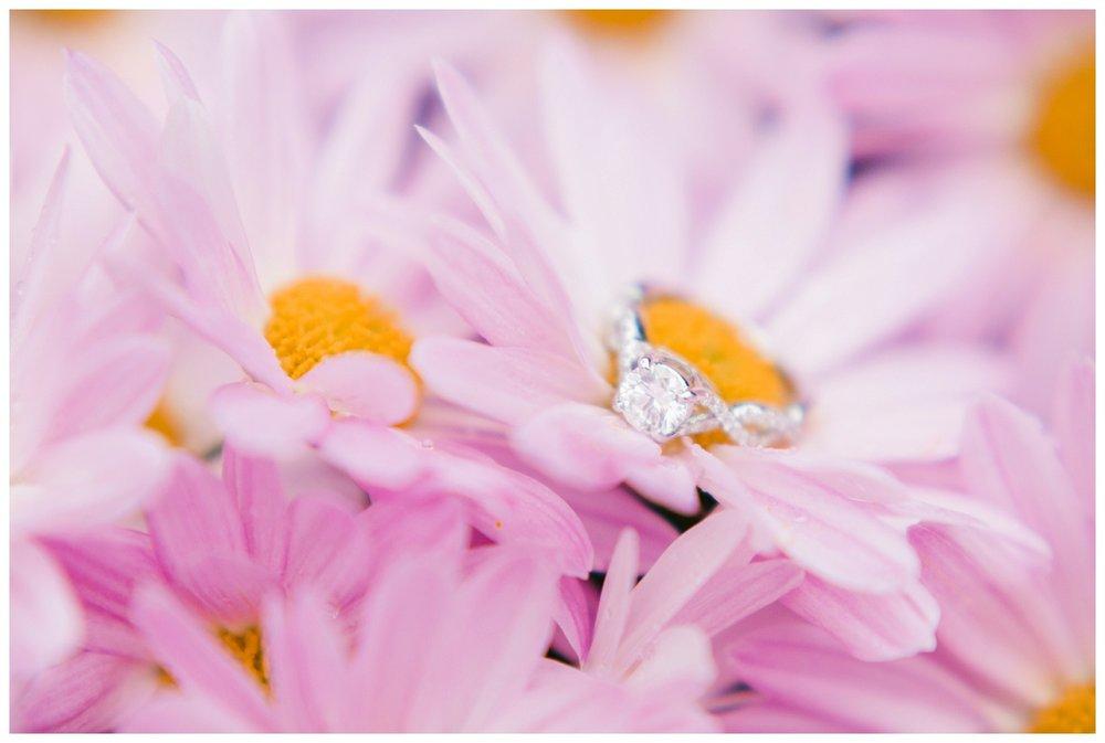 Cleveland Engagement Photographers_0041.jpg
