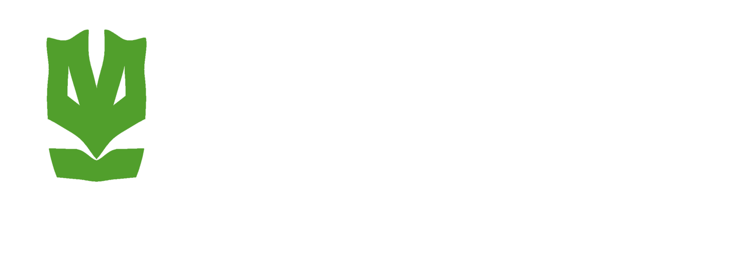 Krav Maga Defence Institute