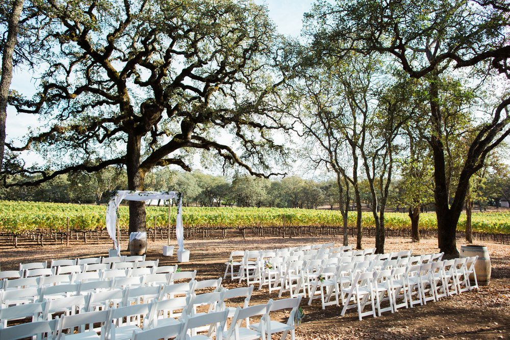 BR_Cohn_Winery_wedding.jpg