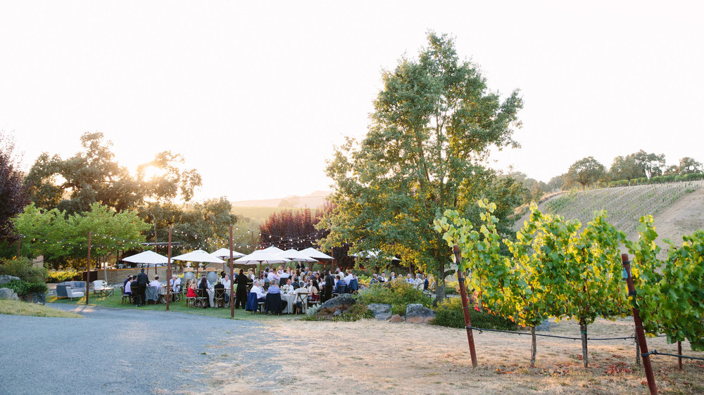 arista_winery_64.jpg