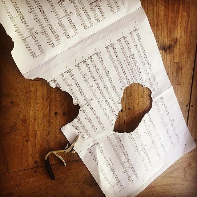How our rabbit interprets music🧐 #musicinterpretation #creativerabbit #why #because #yammie