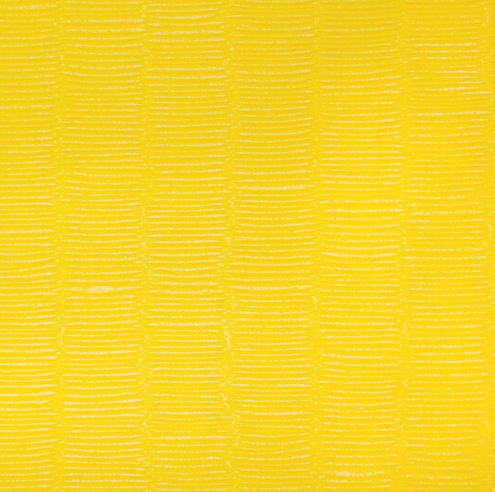 tatami_yellow_Fuji.jpg