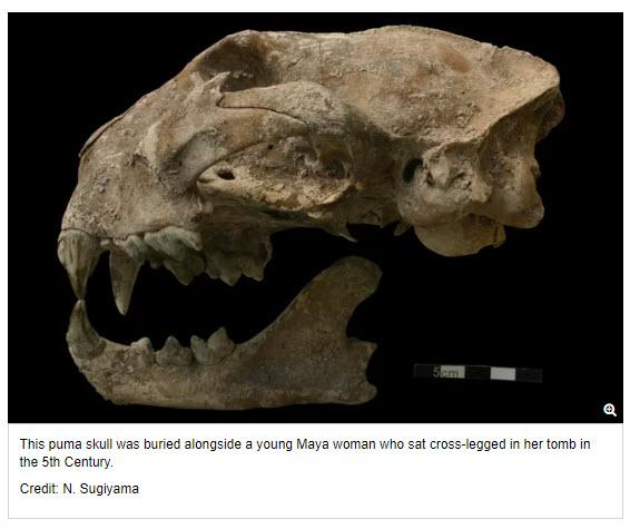 maya jaguars.jpg