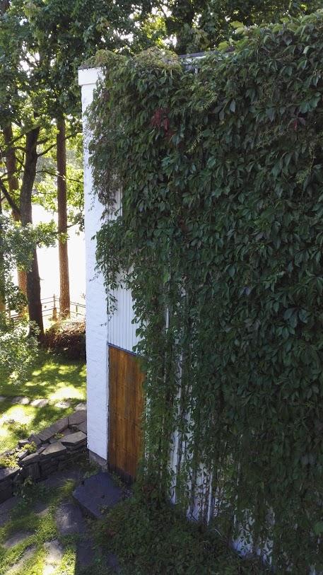 Aalto talo AK 8.jpg