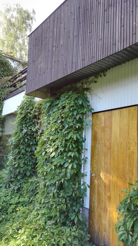 Aalto talo AK 16.jpg