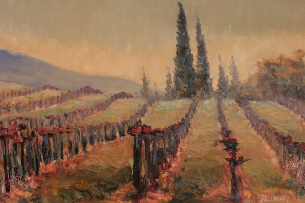 Vineyard II