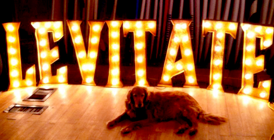 LEVITATE in Vintage Style Lighted Marquee Letters.jpg