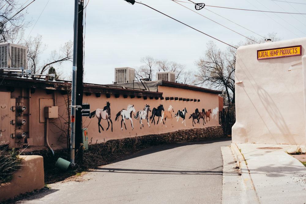 NewMexico-3.jpg