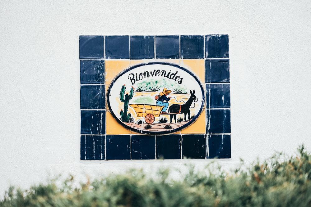 NewMexico-10.jpg