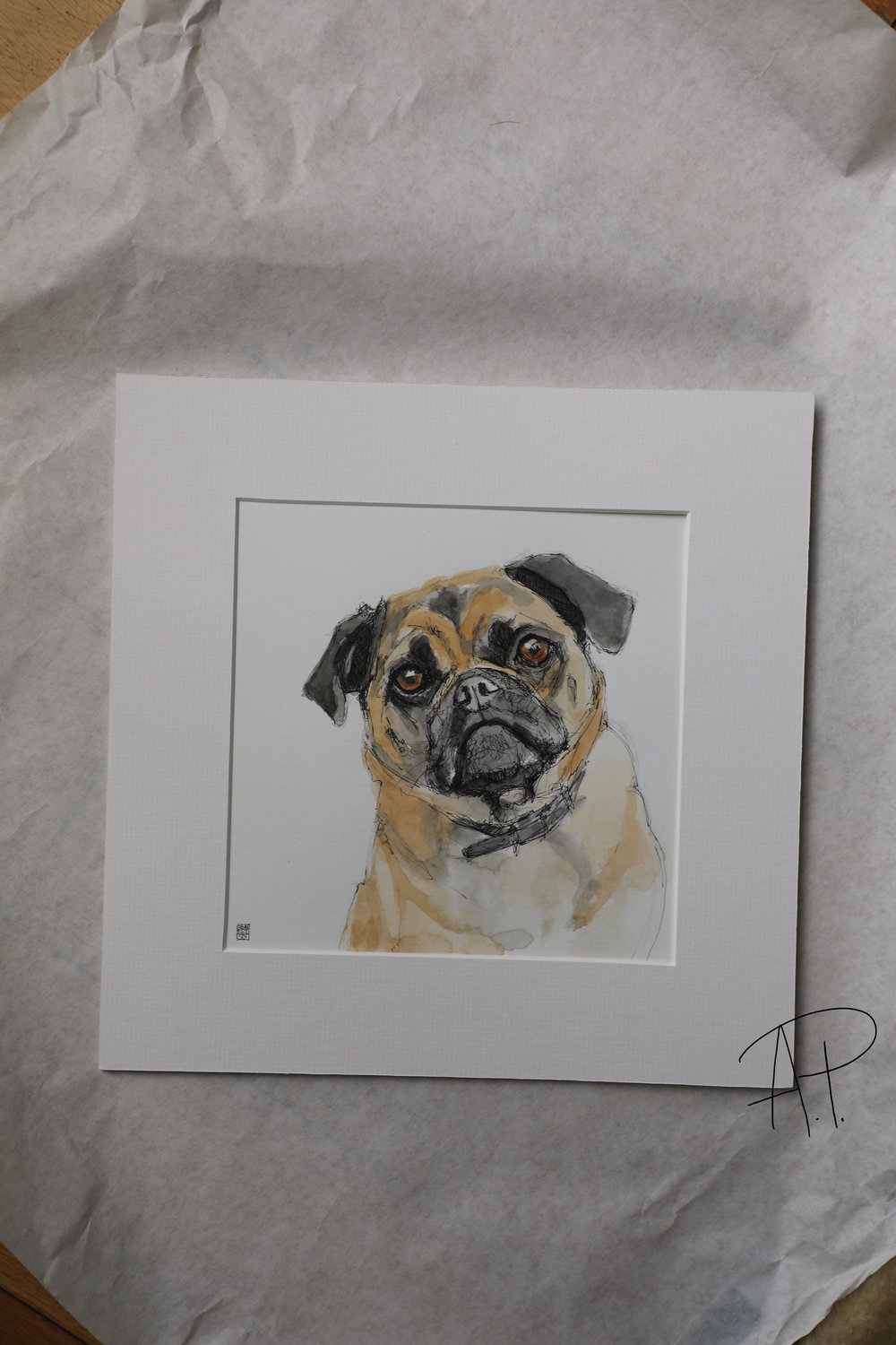 Bow Wow Sketch - Pet Portaiture