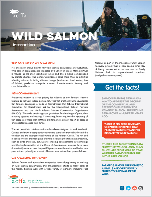ACFFA_factsheets_wildsalmon.jpg