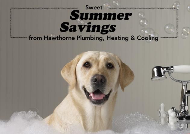 summer-savings