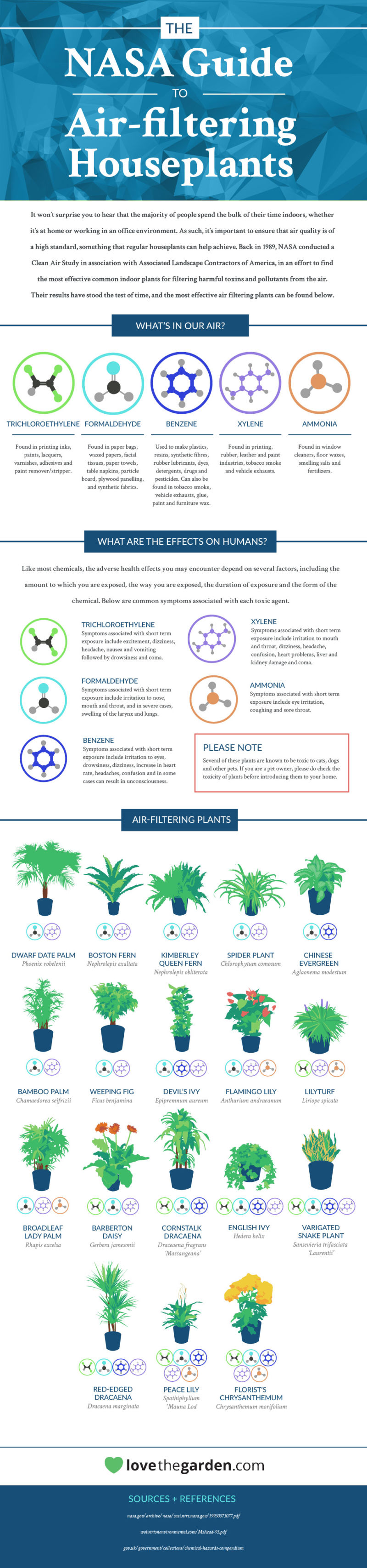 nasa guide to air cleaning house plants