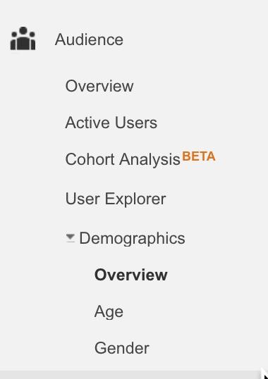 Demographics in Google Analytics.jpg