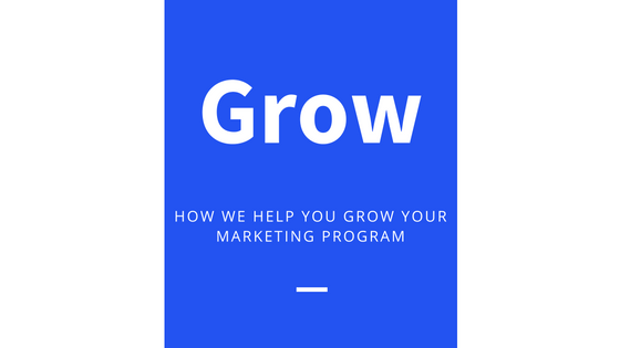 how we help you grow your marketing program analytics that profit.png