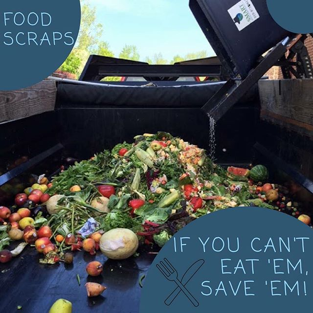Over 30% of food is wasted in the United States. We can turn these food scraps into nitrogen and phosphorus rich soils by composting them!  #charlestonwastewarriors #growfoodnotlandfills #rethinkwhatyouthrowout  #nutrientrecyclers #composttheworld