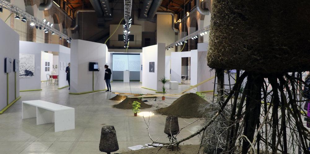 Copy of Exhibition 1.jpg
