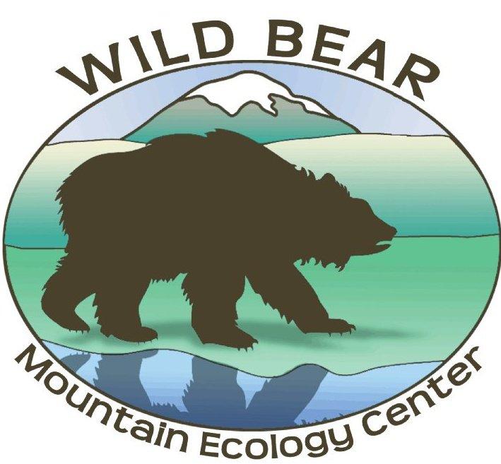 wildbear1.jpg