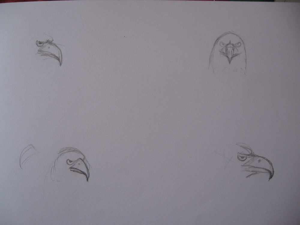 First tentative sketches - eagle beaks