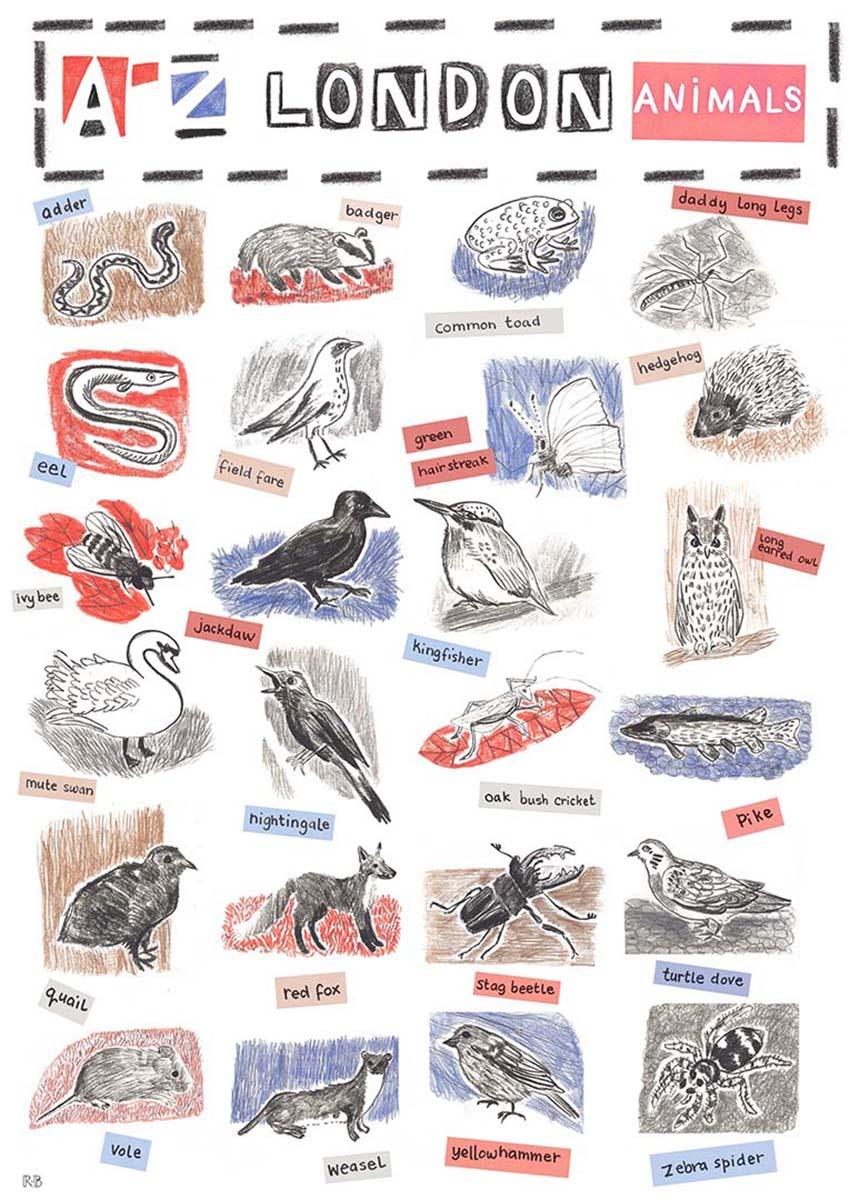 A-Z London Animals